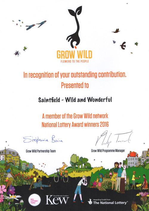 Saintfield Development Association Grow Wild Certificate